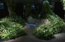 Lowline video tour: inside the test lab for the world's first underground park
