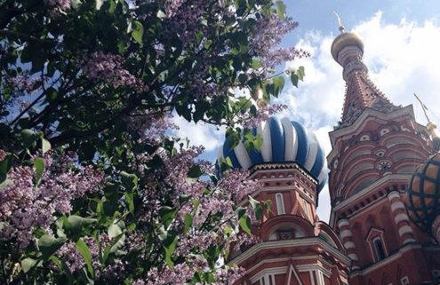 11 landmarks in bloom this season