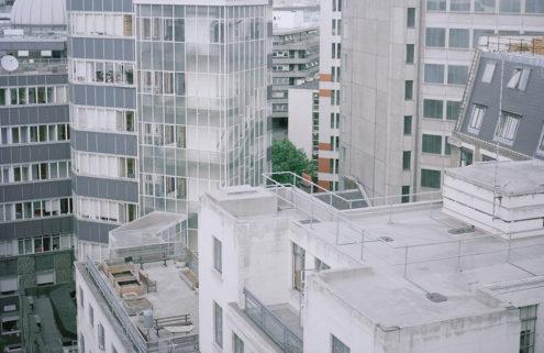 High rise honey: Dan Mariner photographs London's rooftop beehives
