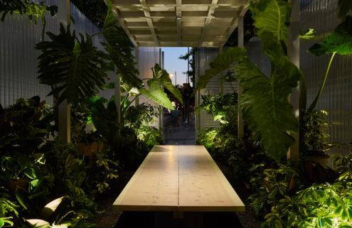 Designer Asif Khan plants 'Mini Living Forests' in East London