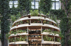 Growroom explores how cities can feed themselves