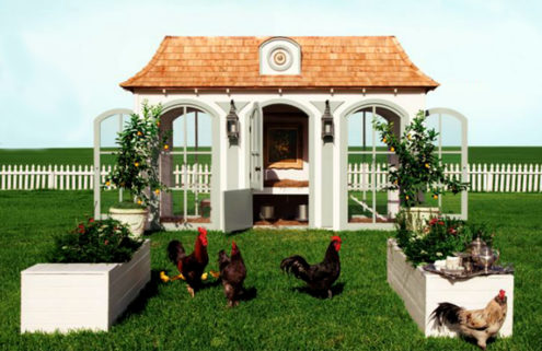 7 pet palaces: designer dog houses, casas for kitties and boltholes for birds