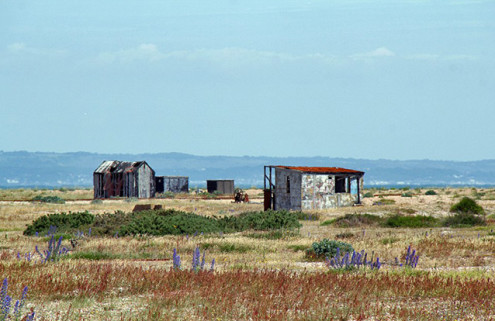 Dungeness Estate: Britain's only desert could be yours for £1.5m