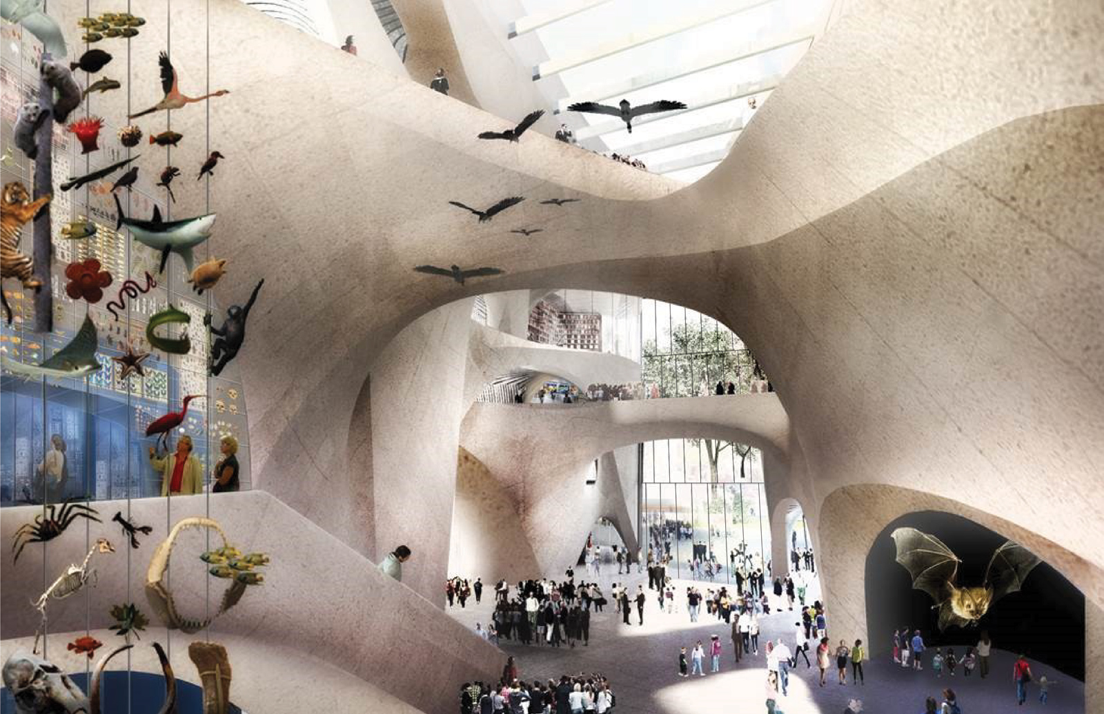 Proposed Interior of the Gilder Center Central Exhibition Hall. Courtesy of the American Museum of Natural History