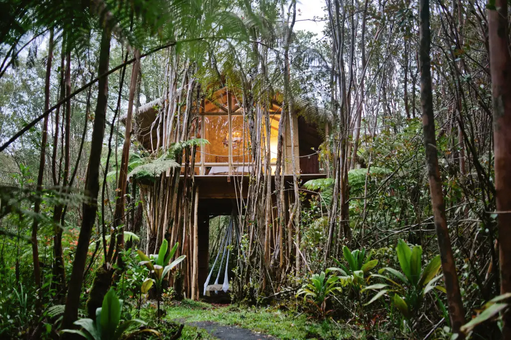 Big Island Fern Forest tropical treehouse retreat
