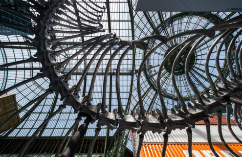 An aluminium snake, shipping containers and Napoleon's hat take over Paris' Grand Palais