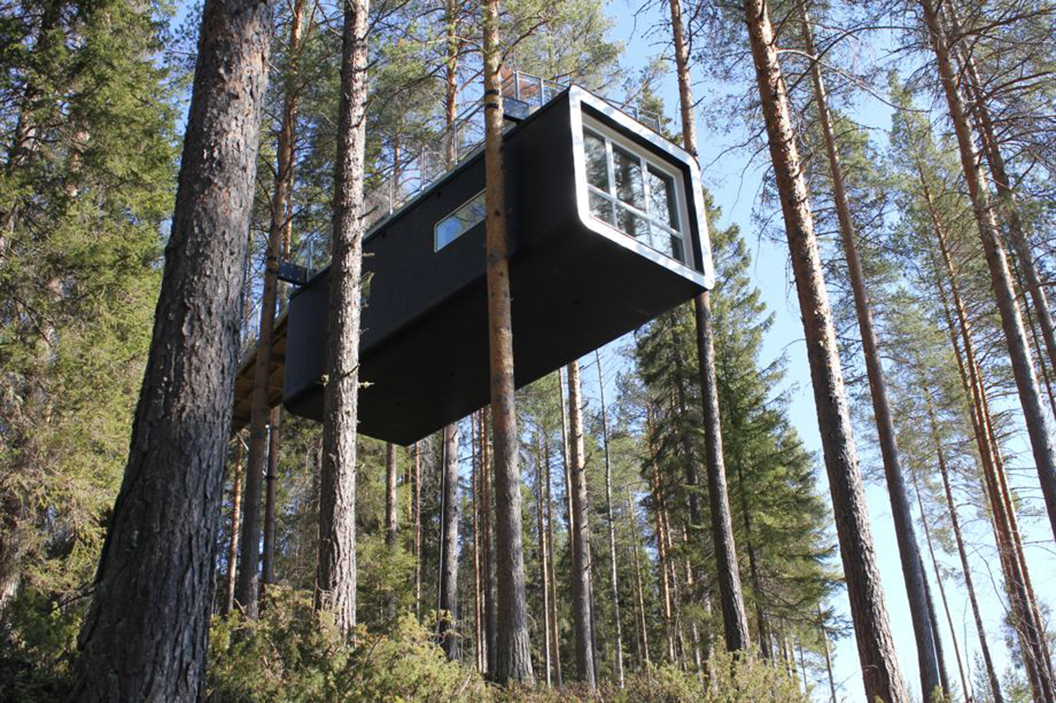 Spectacular Treehouses Stay Summer Spaces
