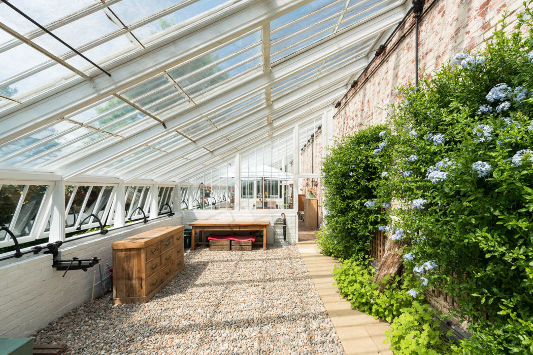 A converted 19th-century greenhouse in Kent goes on sale on green lavender, green gardening, green butternut squash, green beets, green bonsai, green tulips, green nature, green shrubs, green bushes, green perennial, green garden design, green flowers,
