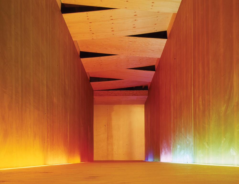 Aysymmetric Chamber. Photography: Lyndon Douglas