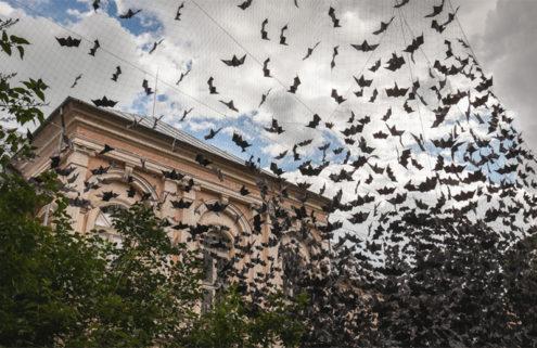 10,000 bats 'fly' in front of Latvia's 18th-century Zalenieki Manor