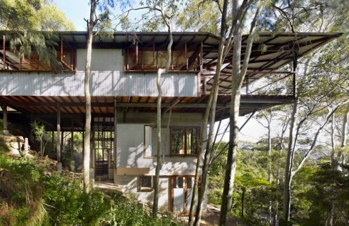 Property of the week: Treetop House by Peter Stutchbury in Sydney