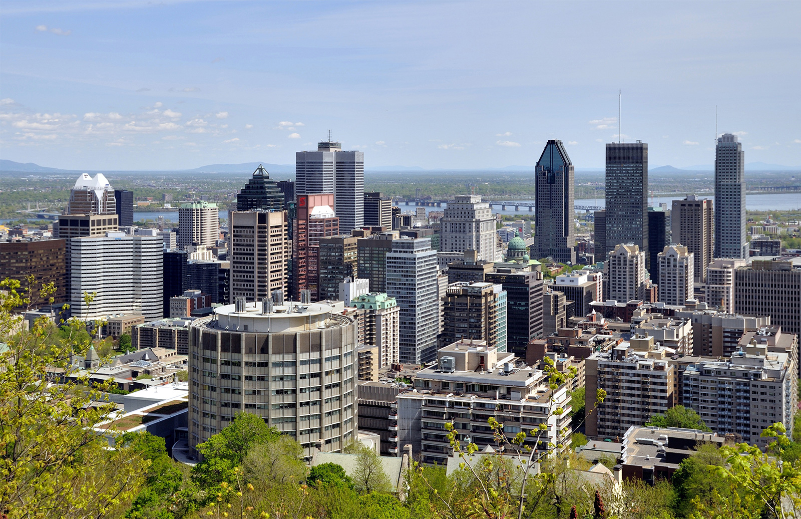 Cities to watch in 2017: view of Montreal's skyline