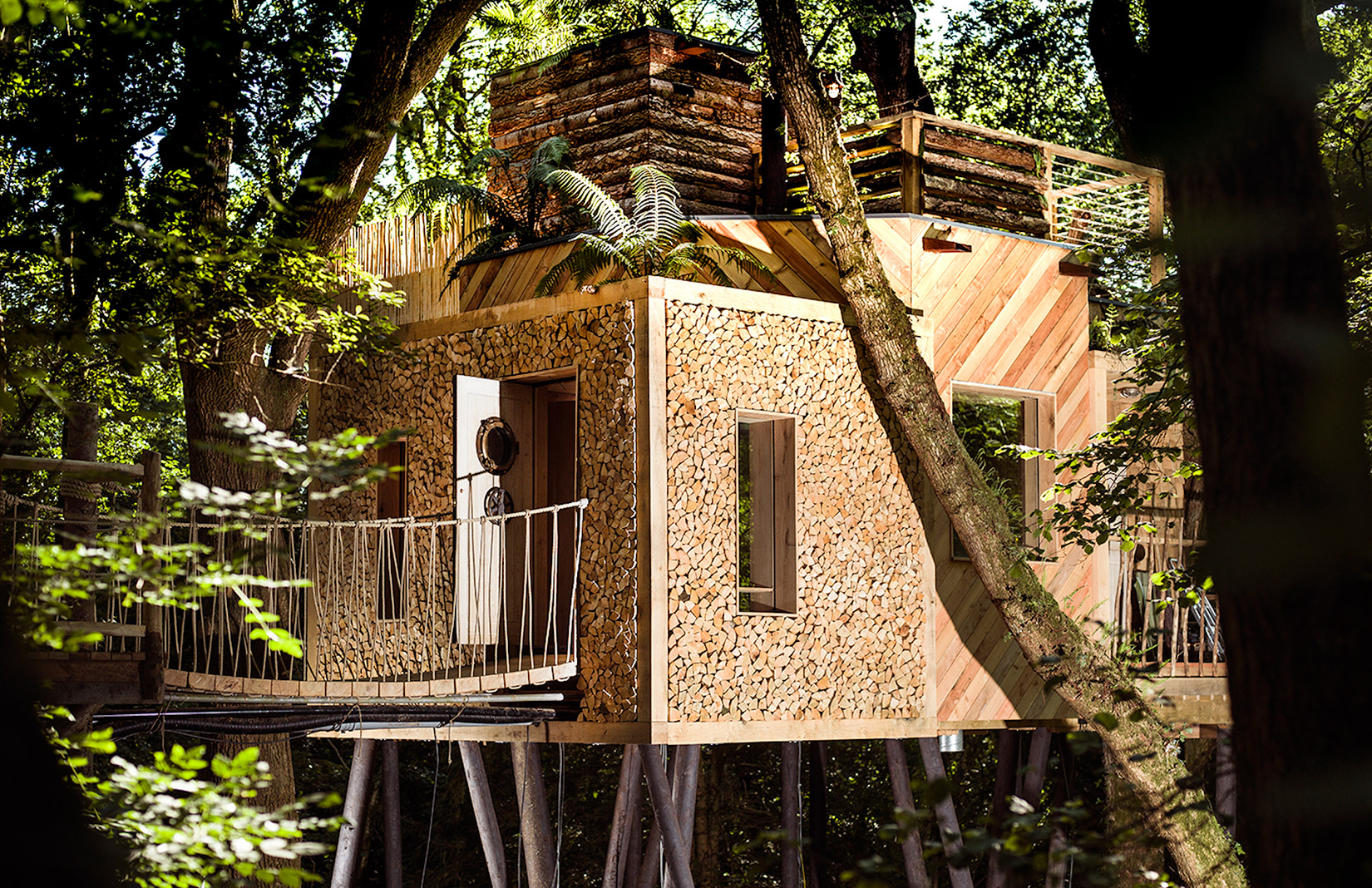 Holiday rental: treehouse in Dorset
