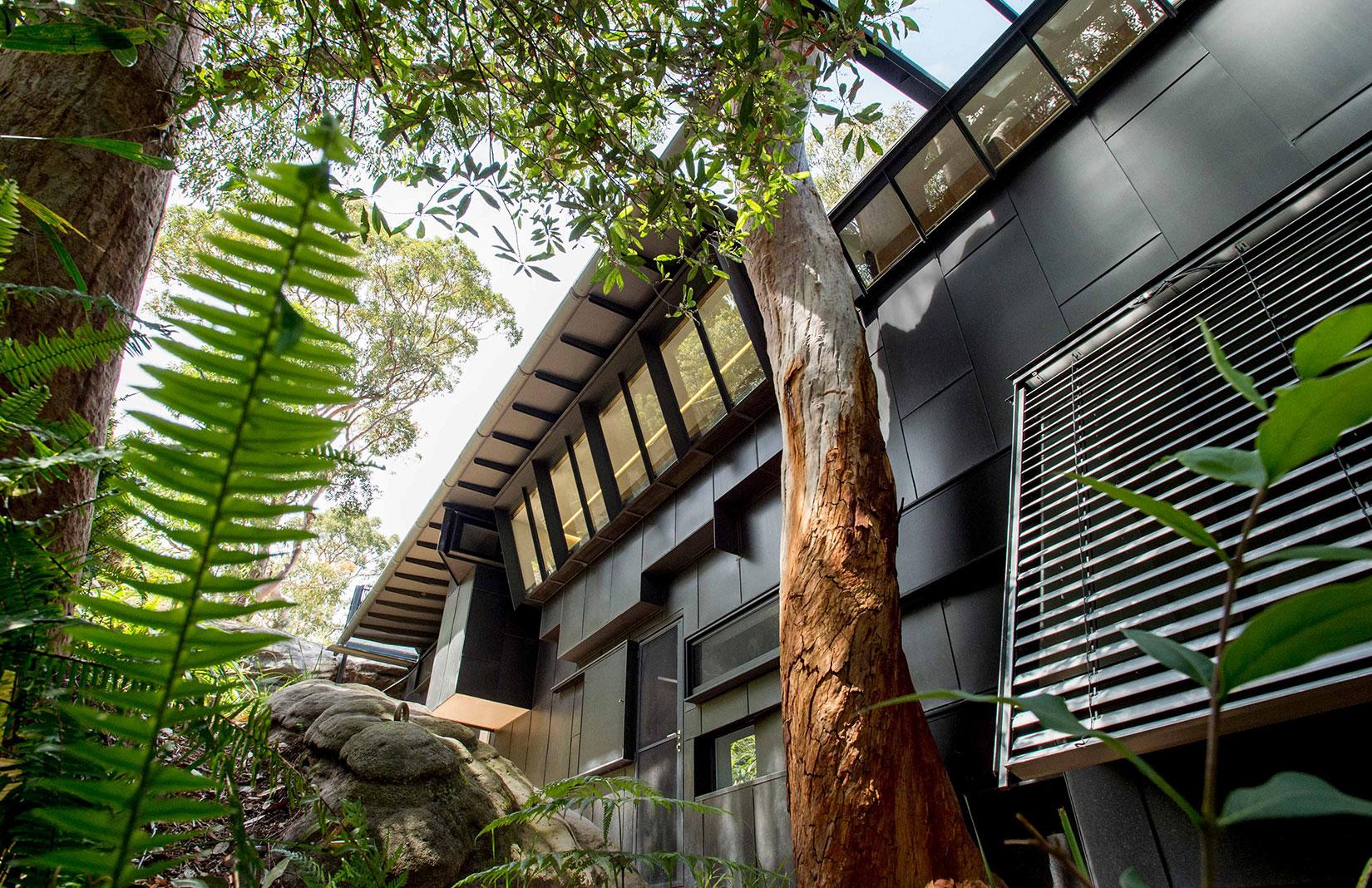 Sydney property Donaldson House, designed by Glenn Murcutt