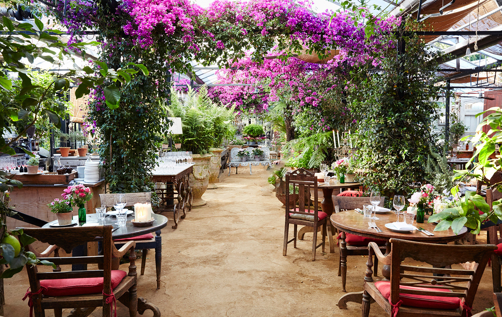 London Restaurants With Gardens Petersham Nurseries