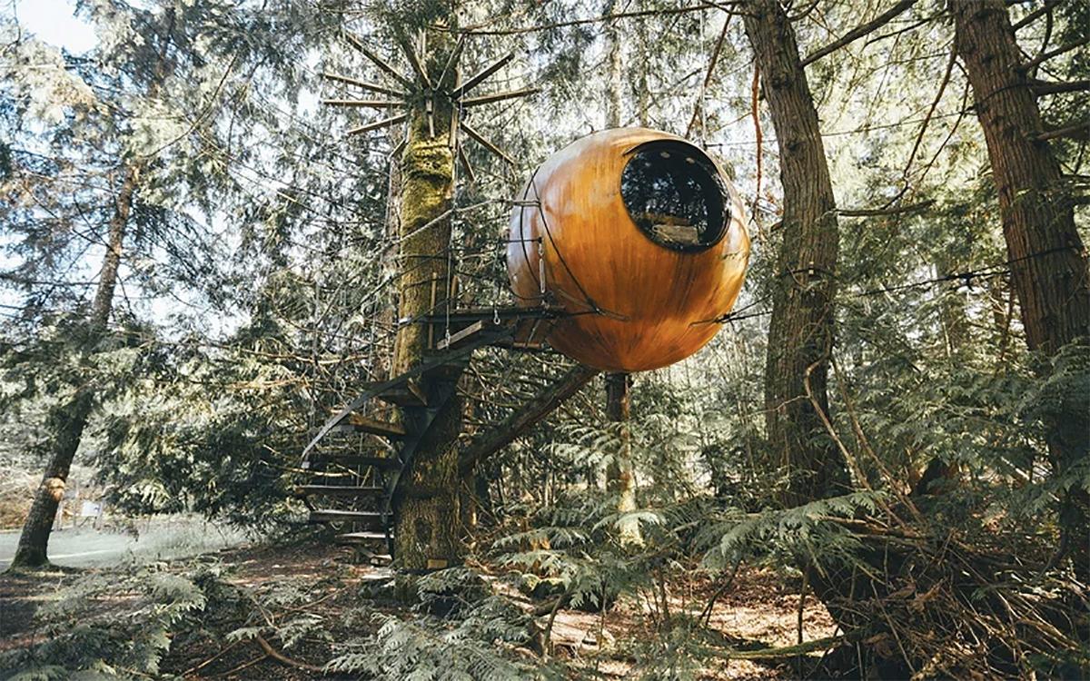 Freedom Spheres