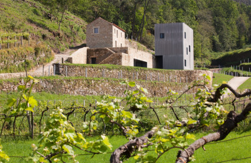 Holiday home of the week: a vineyard villa complex in Portugal's Melgaço