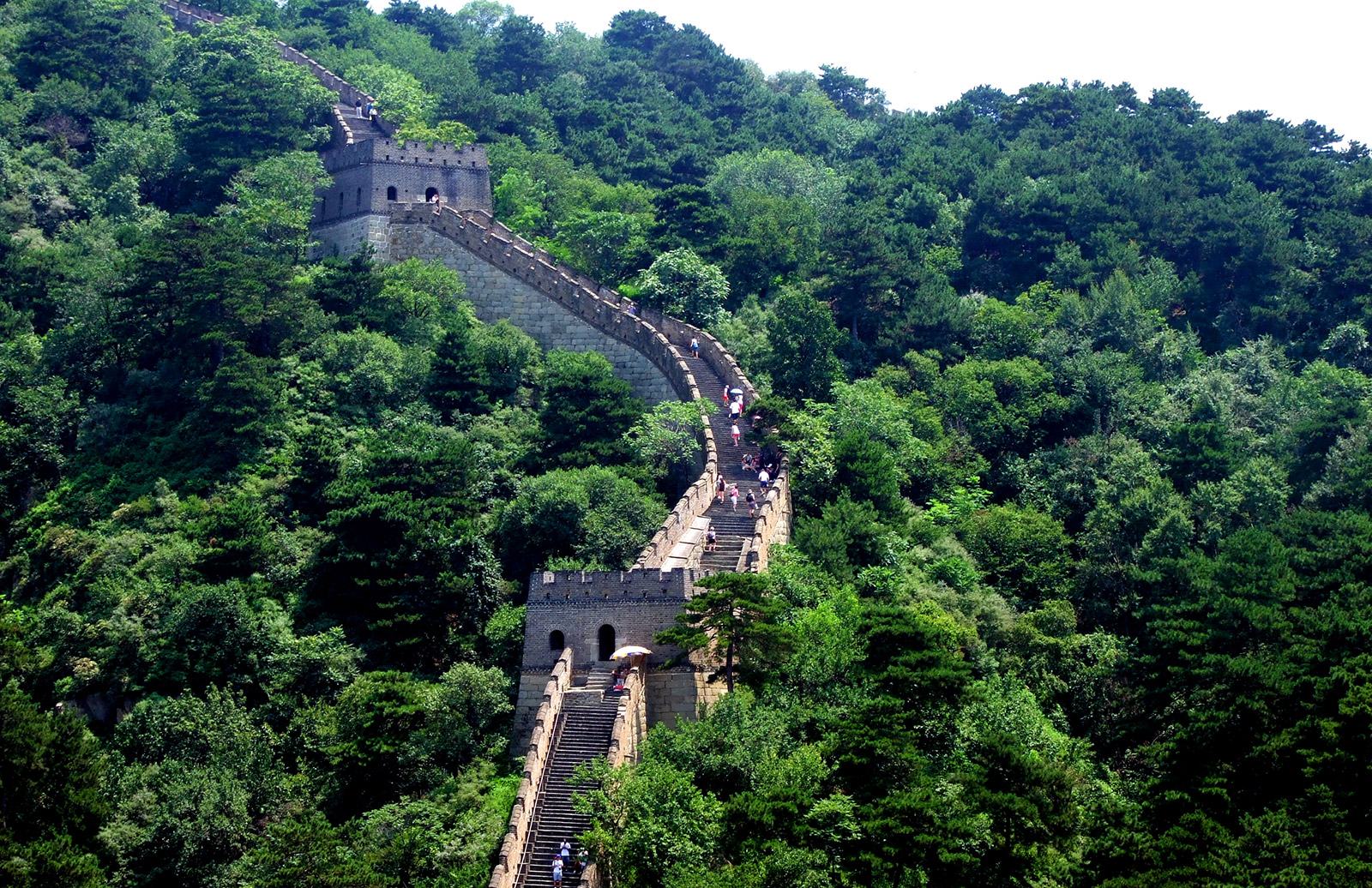China Great Wall and forest