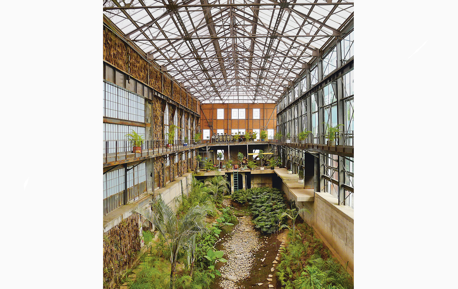 Biblioteca Vasconcelos (Vasconcelos Library) Greenhouse, Mexico City Photography: Aaron Schmidt (c)