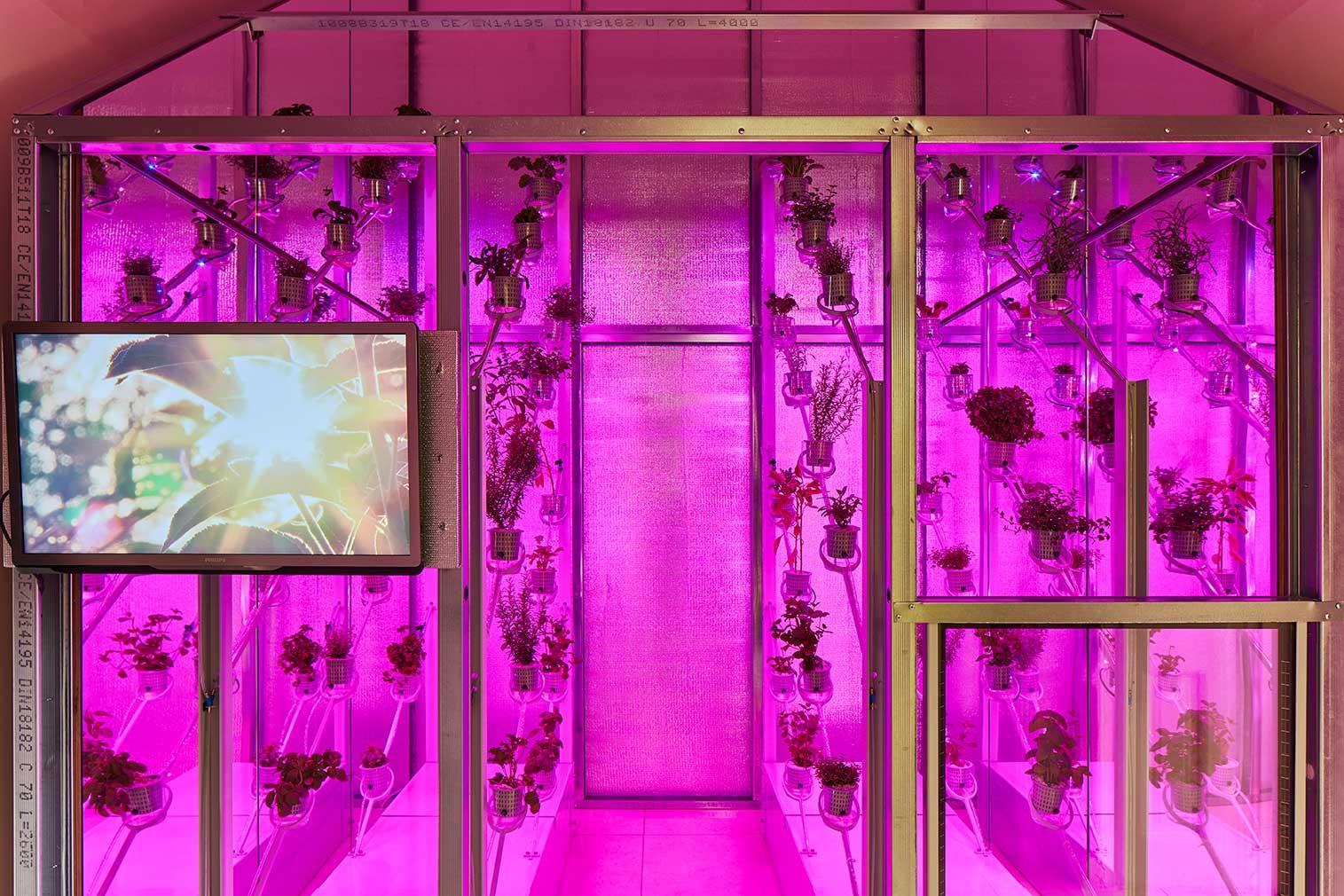 The Netherlands' pavilion at London Design Biennale 2018