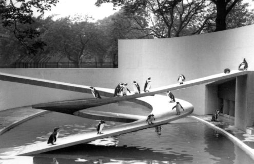 London Zoo's modernist 'penguin utopia' is beyond repair says Lubetkin's daughter