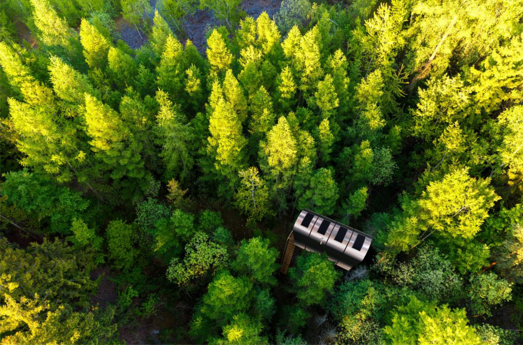 Fuselage cabin by Tree Tents International