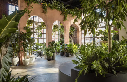 New York's 'greenest' store throws open its doors