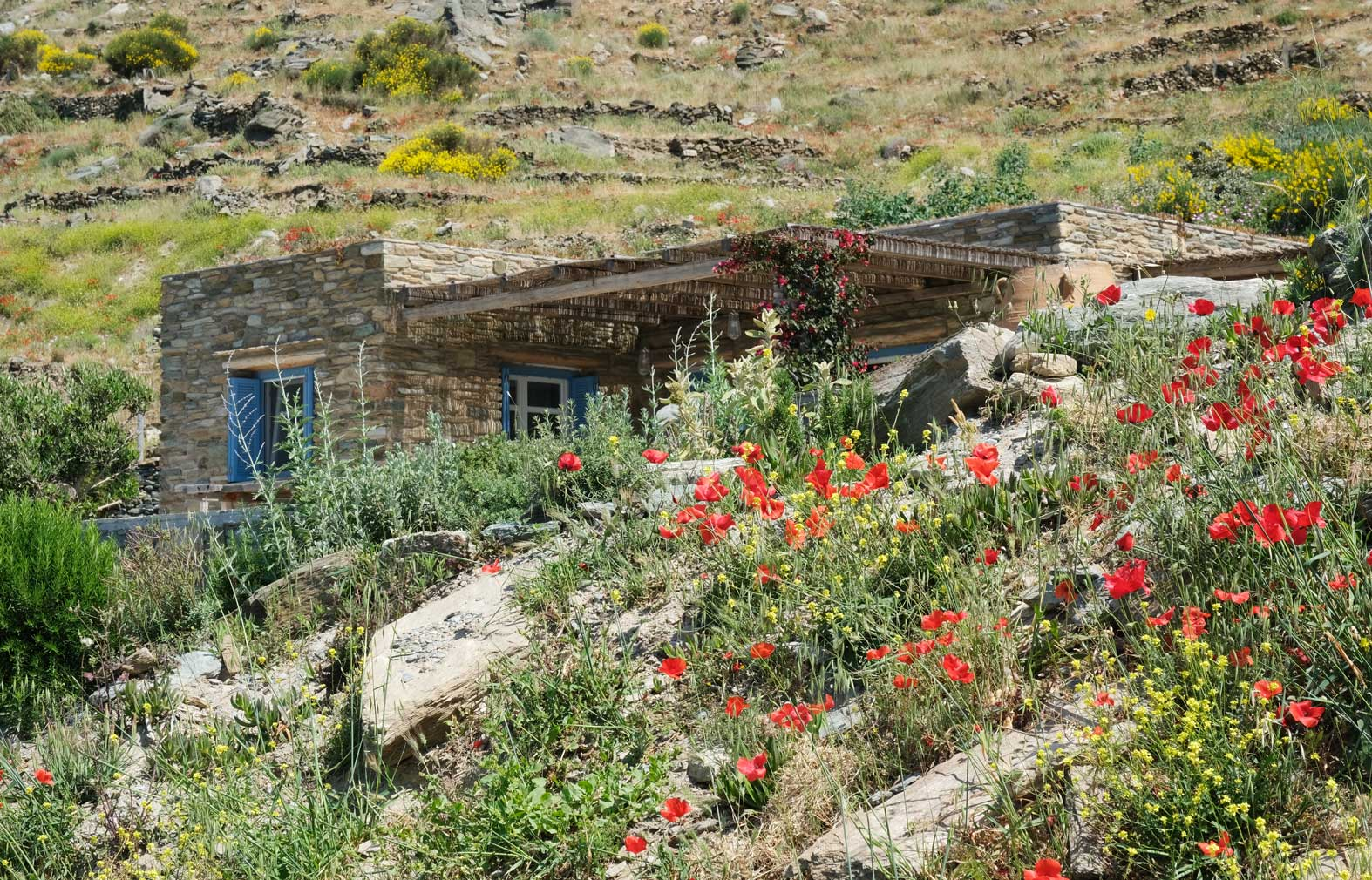A steep and secluded dirt track leads to Mèlisses on Greece's Andros island – a rustic complex that looks as though it's been bedded into the clifftop for generations.