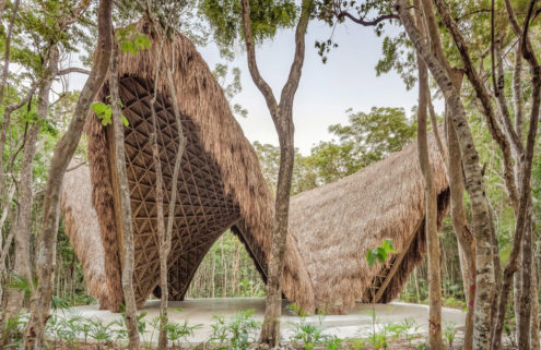 This bamboo-covered pavilion is a yoga studio in the middle of the Mexican jungle