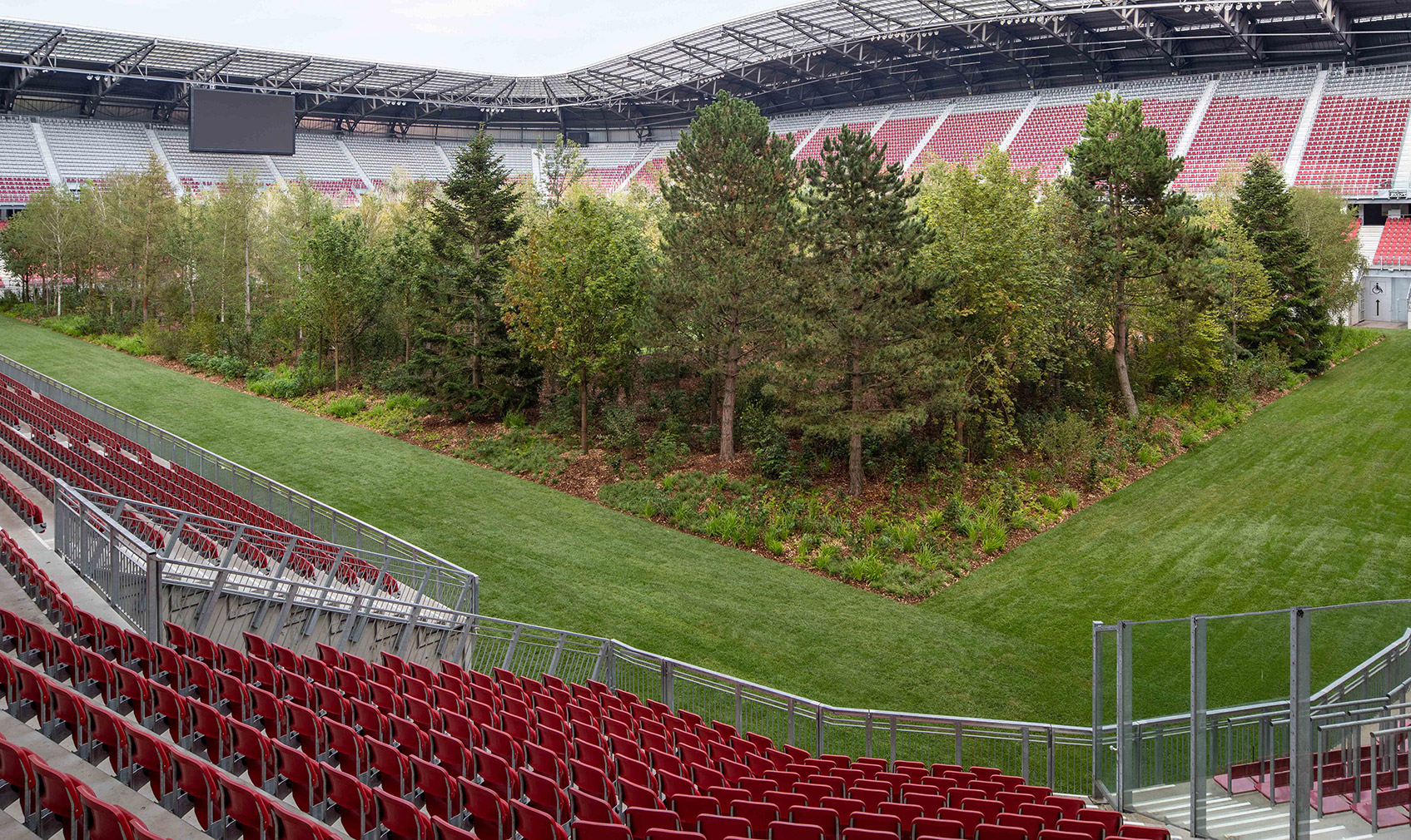 Artist Klaus Littmann fills an Austrian football stadium with 300 trees