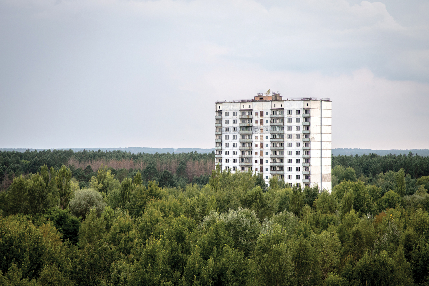 Residential building, Pripyat outskirts. The city is completely enveloped in a dense blanket of forest, blurring its former perimeters. © Darmon Richter / FUEL Publishing