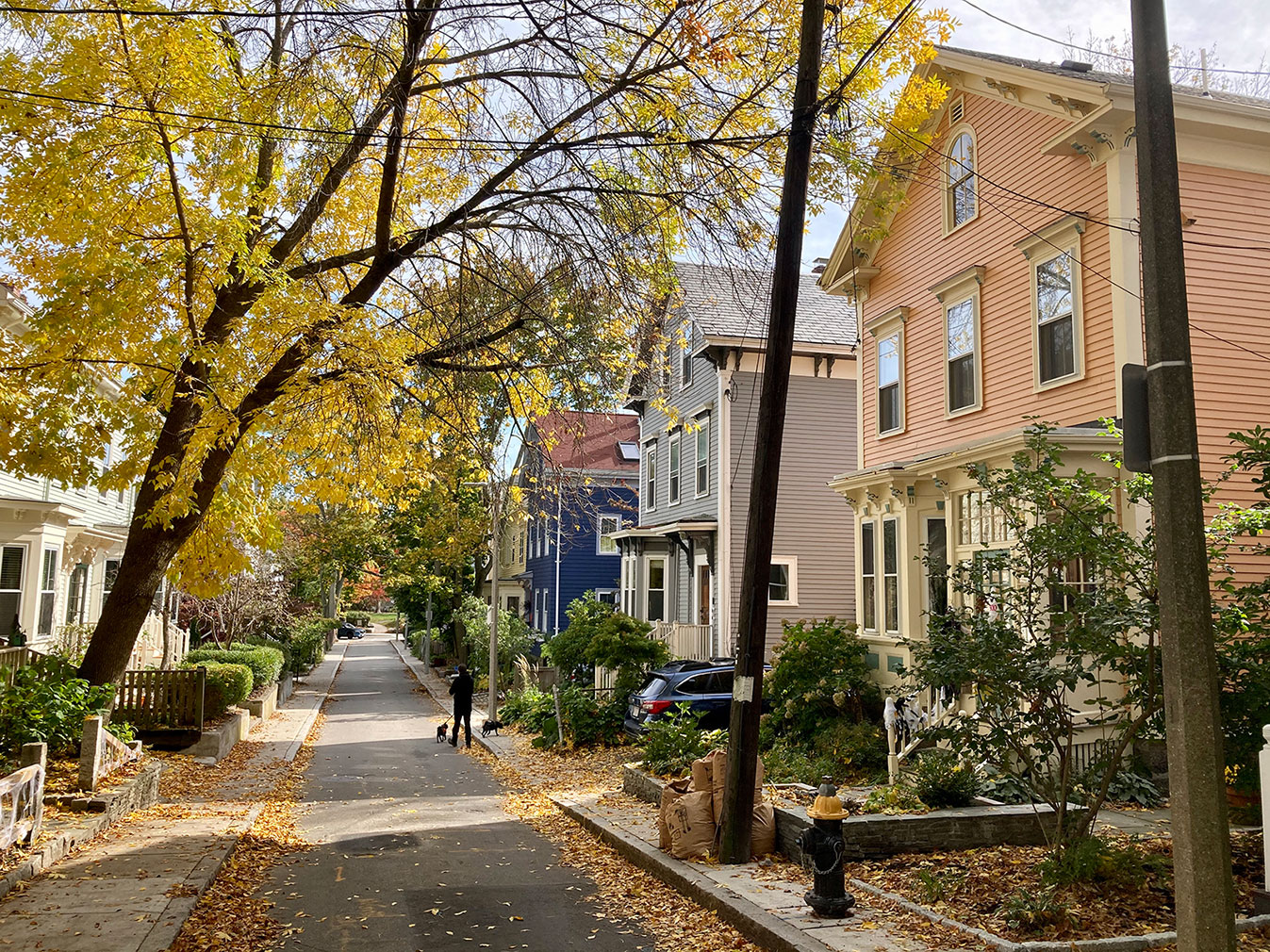 A street shot capturing the colourful houses of Jamaica Plain